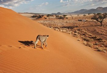 namibia_small